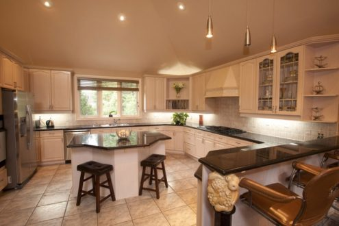 image of a luxurious kitchen